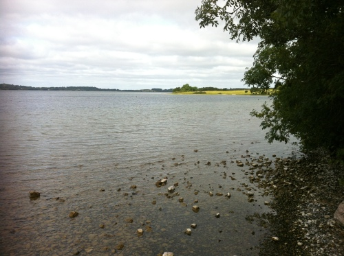 A very low Lough Owel.