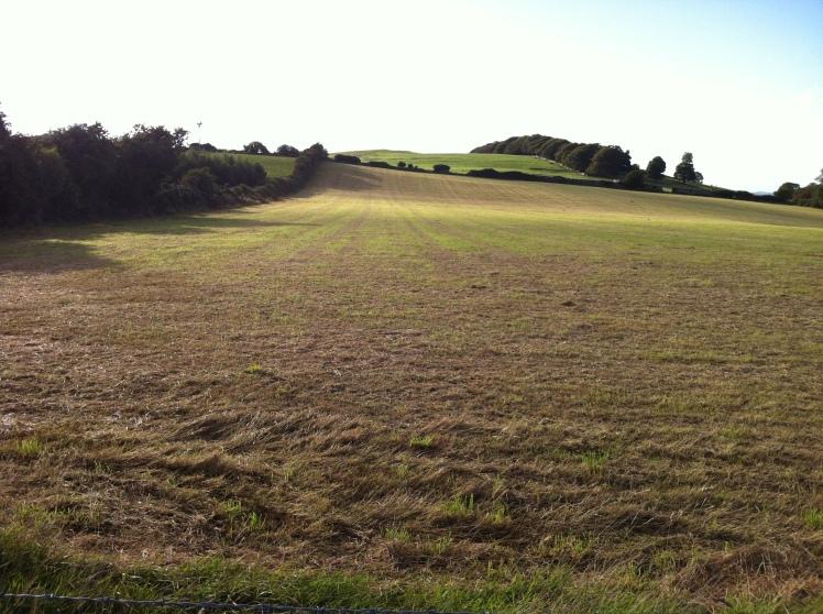 Lyons Hill.