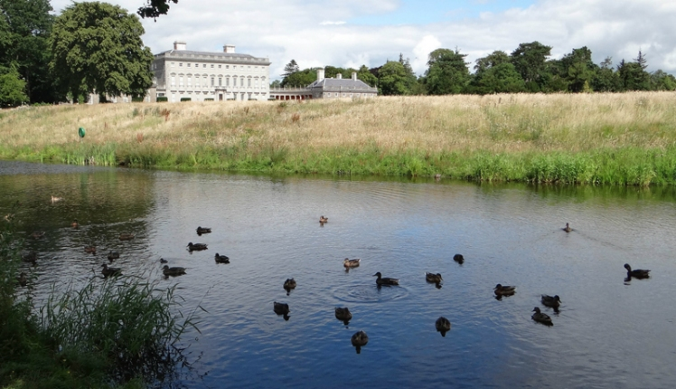 The front of Castletown House with the newly revamped duck pond!