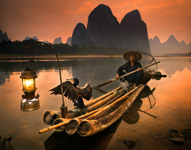 cormorant_fishing1.jpg