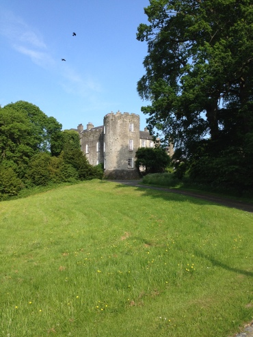 Leixlip Castle. Buckets of history for another day's blogging.