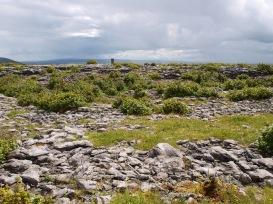 Lough Avalla landscape.
